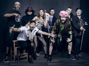 Gogol Bordello, 2018